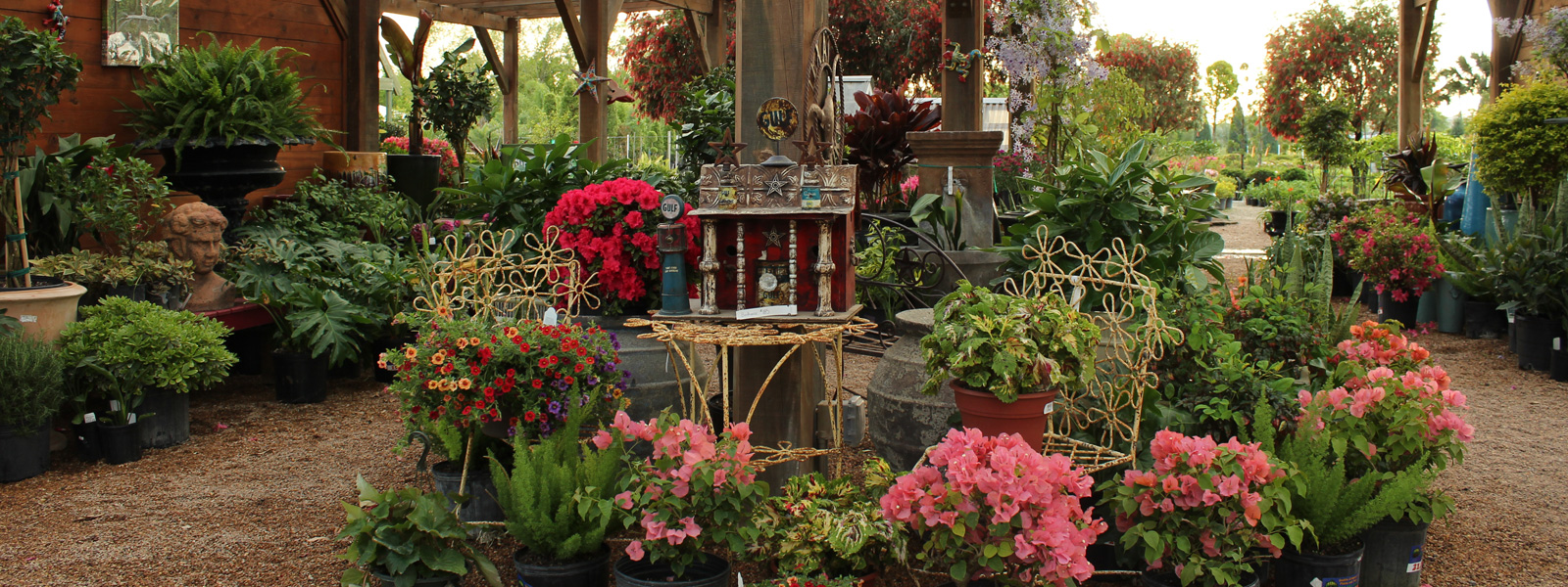 Houston Location - Shades of Texas Nursery & Landscaping - The ...